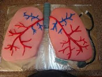 nursing cake lungs