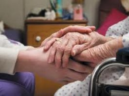 hospice nurse qualifications and job outlook