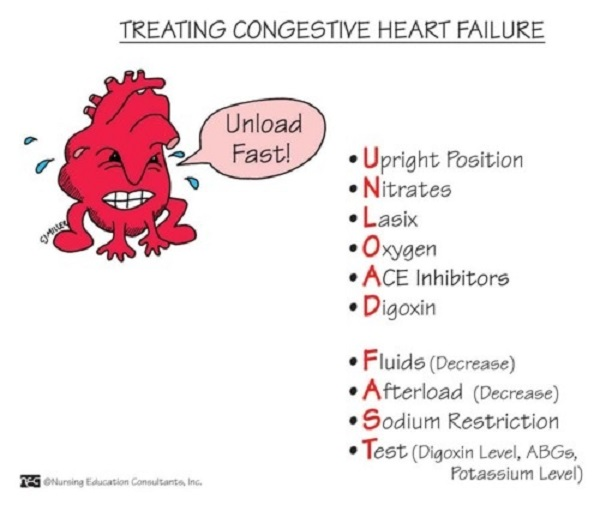 nursing care congestive heart failure Learn nursing care patients heart failure with free interactive flashcards choose from 500 different sets of nursing care patients heart failure flashcards on quizlet.