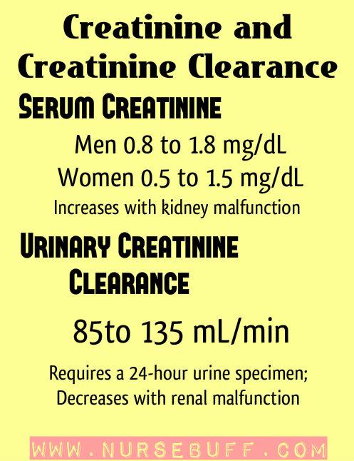 creatinine nursing mnemonics