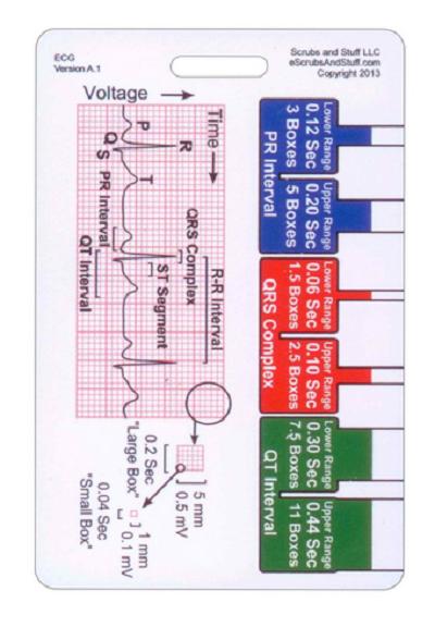EKG Ruler Vertical Badge ID Card Pocket Reference Guide ECG