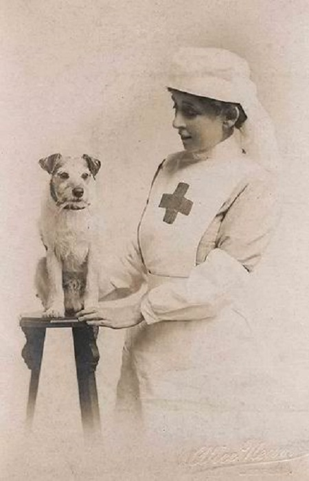 WWI nurse posing with a dog