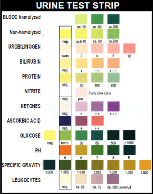 Laboratory Values and Interpretation A Nurses Ultimate Guide – Sample Urine Color Chart