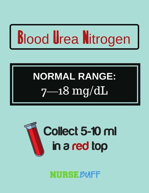 blood urea nitrogen laboratory values