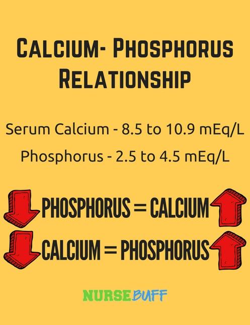 calcium phosphorus laboratory values