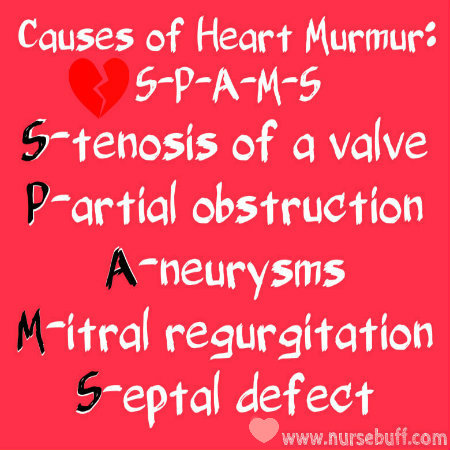 causes of heart murmur nursing mnemonic