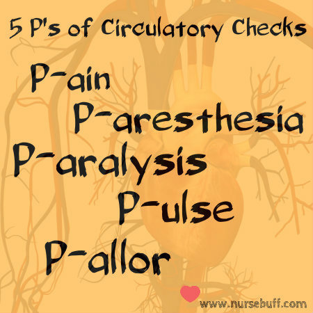 circulatory checks nursing mnemonic