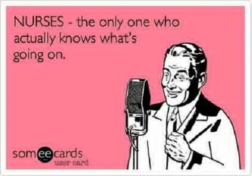funny nursing week quotes