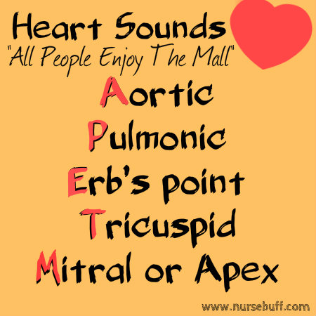 heart sounds nursing mnemonic