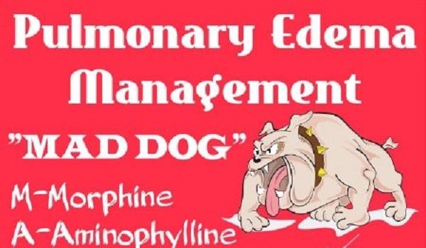 nursing mnemonics and acronyms