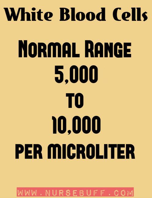 white blood cells normal range