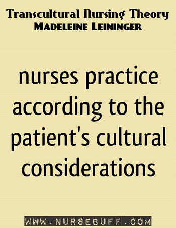 application madeleine leininger theory The cultural care worldview flows into knowledge about individuals, families,  groups, communities, and institutions in diverse health care systems.