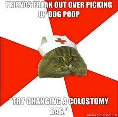 nurse funny memes