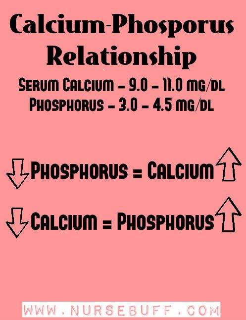 relationship of calcium and magnesium