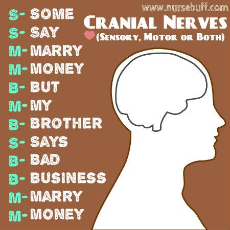 cranial-nerves-nursing-acronym