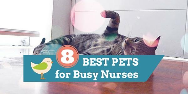 pets for nurses