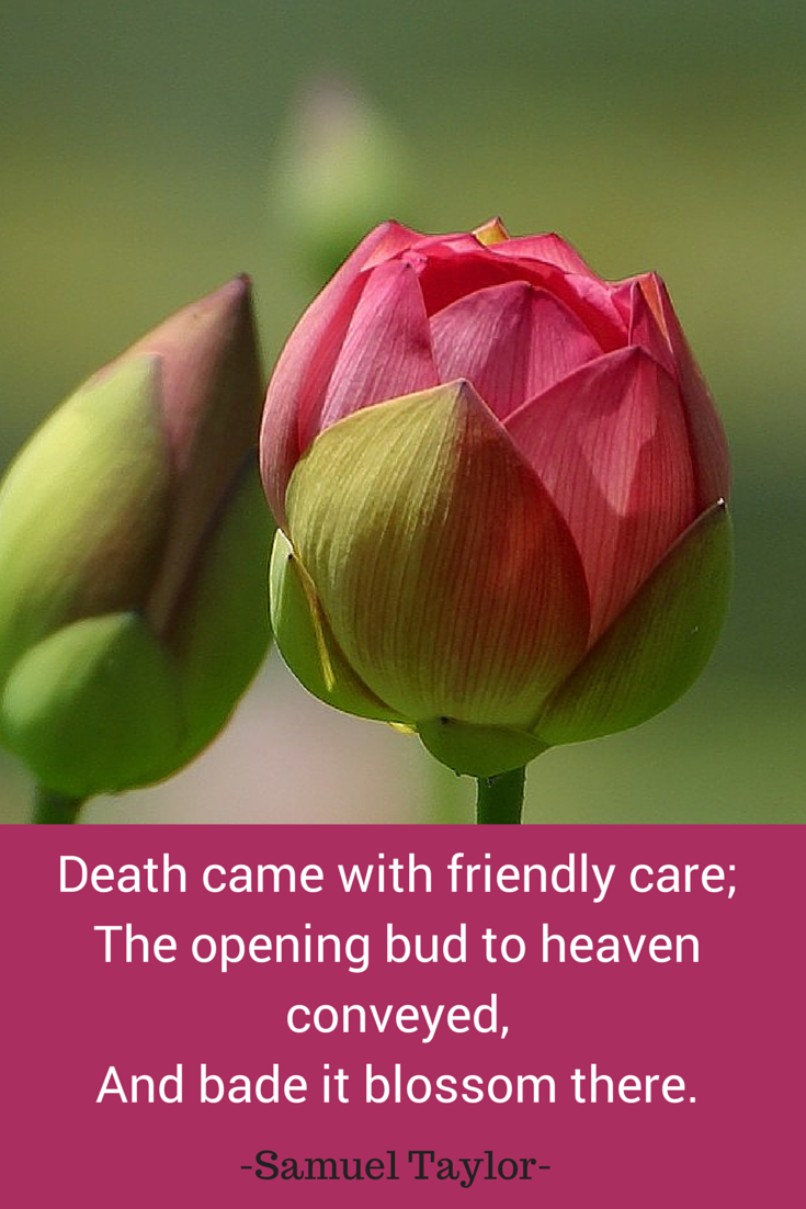 Inspirational Quote Death