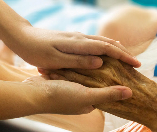 nurses role in palliative care