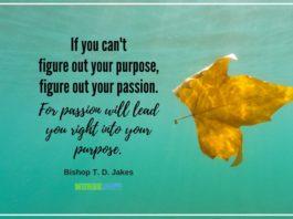 nurse quote nurse passion