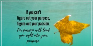 nurse quote nurse passion