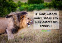 nurse quote big dreams