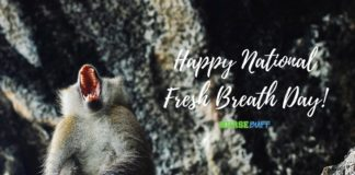 national fresh breath day
