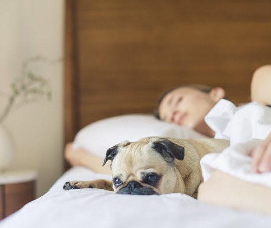 best sleep aids