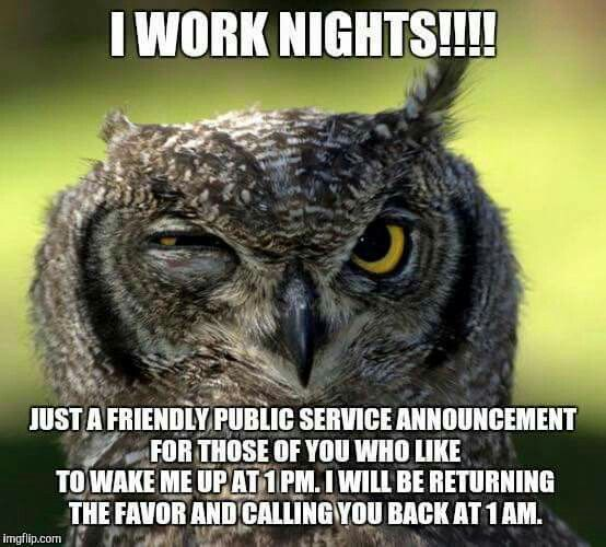 night shift memes owl