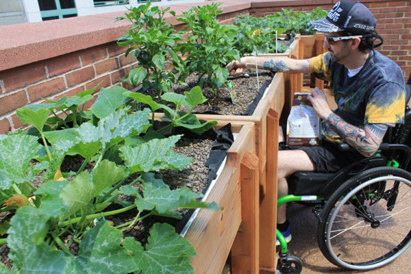 horticulture therapy vocational program