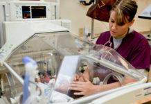 nicu-nurse-salary-job-outlook-career-options