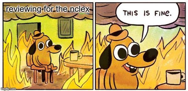 nclex reviewing memes
