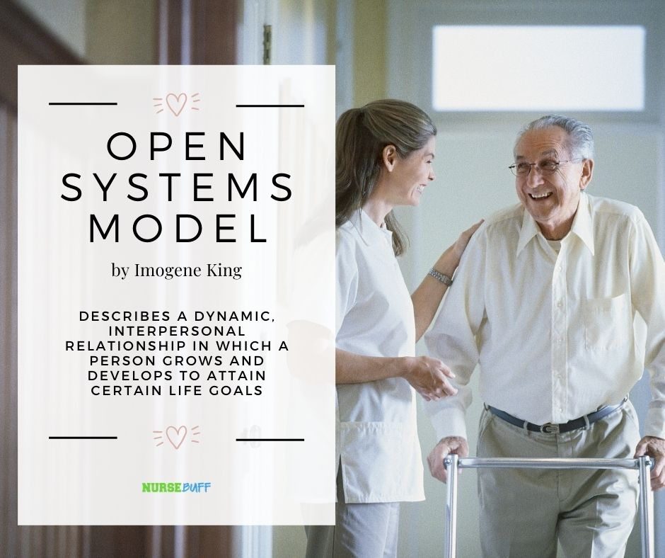 open systems model nursing theories