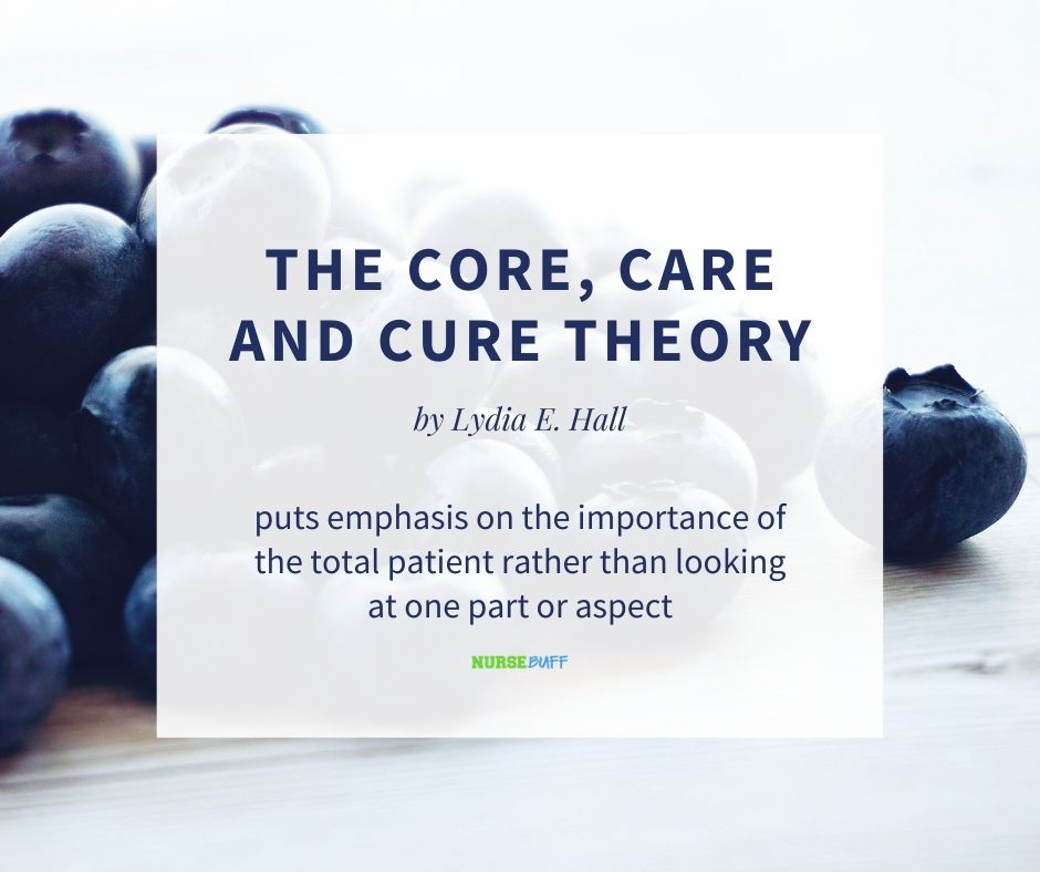 the core care and cure nursing theories