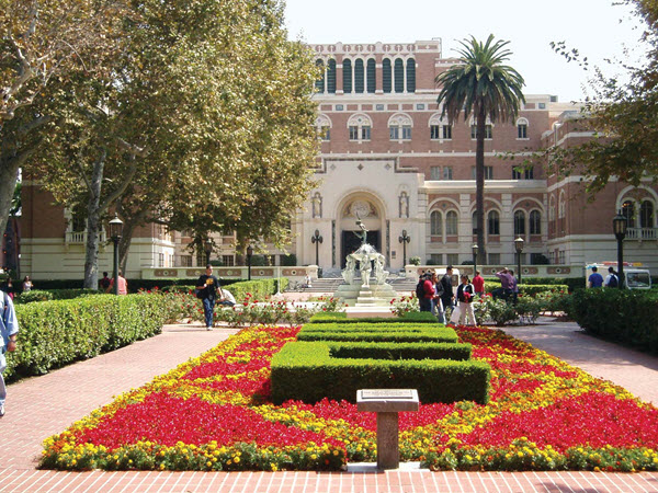best online nurse programs university of southern california